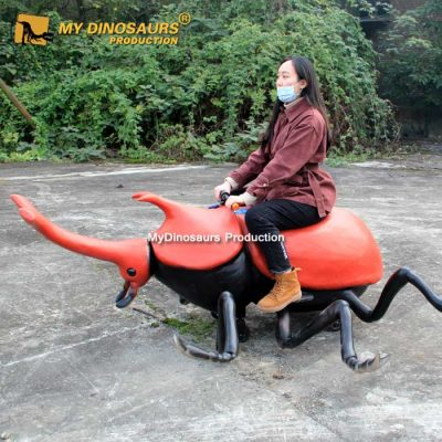 Beetle scooter