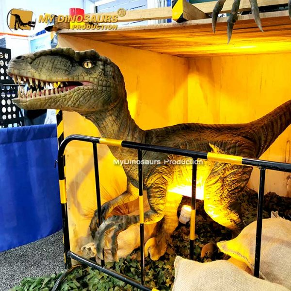 Life size raptor for sale 2