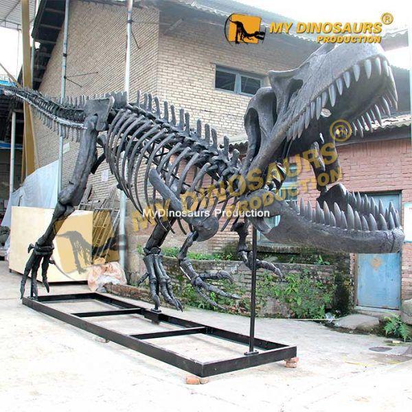 Torvosaurus skeleton 2