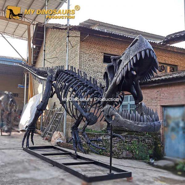 Torvosaurus skeleton