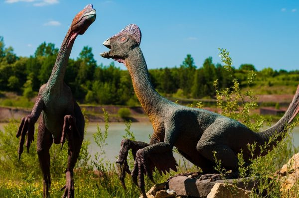 Interactive Tours Bring Dinosaurs to Life