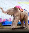 Animal ride elephant 1