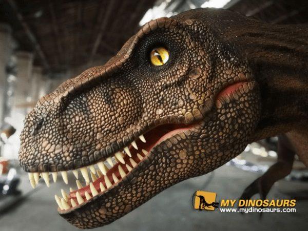 High Quality Dinosaur model