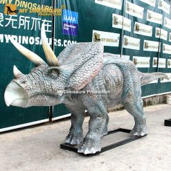 Life size triceratops statue