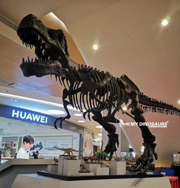 T rex skeleton fossil replica