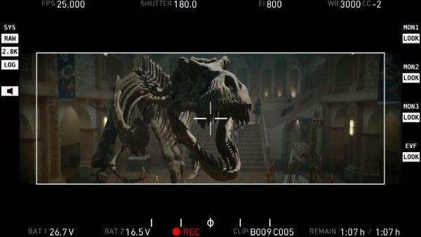 dinosaur skeleton for advertisement