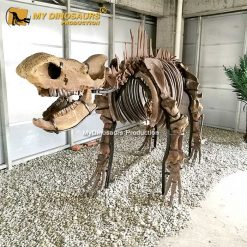 Chilotherium skeleton