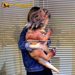 Baby Stygimoloch 1