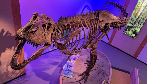 Paleontology age of dinosaur discoveries