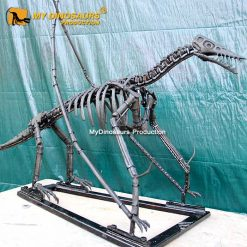 Rhamphorhynchus skeleton