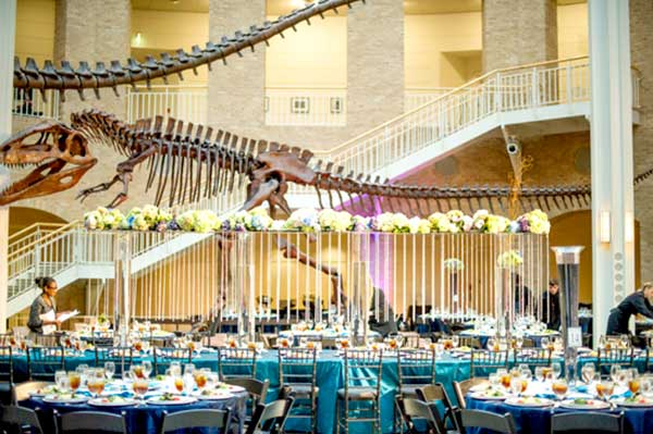 Dinosaur wedding ideas