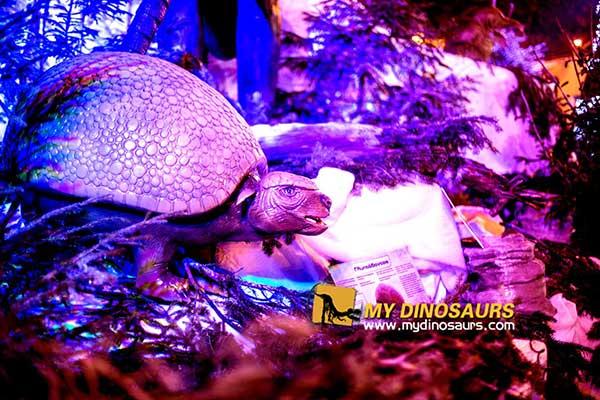 Prehistoric Beasts Travelling Museum Exhibit 2