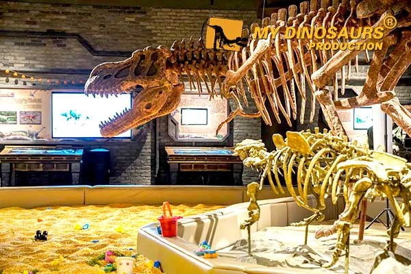 Project Showcase Dinosaur Club