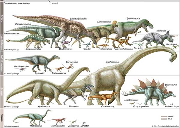 Different dinosaur species