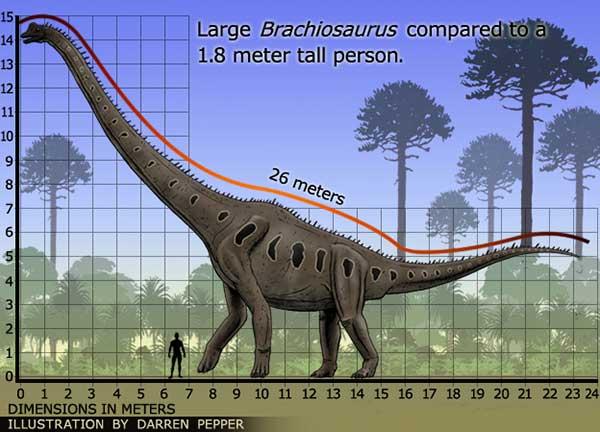 Jurassic Brachiosaurus