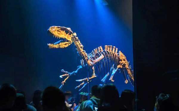 Jurassic Park Film Props Exhibition 4