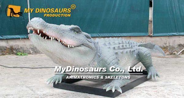 animatronic crocodile for sale