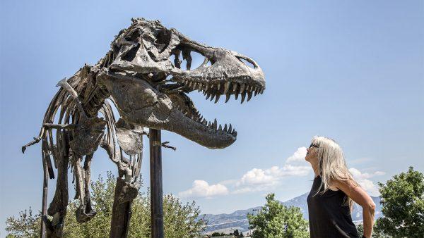 most famous dinosaur skeleton